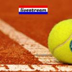 Live stream Arantxa Rus vs Mihaela Buzarnescu