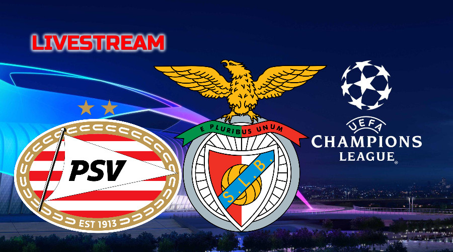 Champions League live stream PSV - Benfica