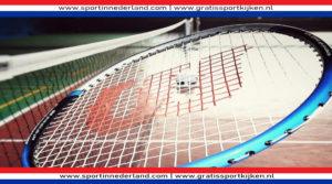 Badminton (Foto Pikist)